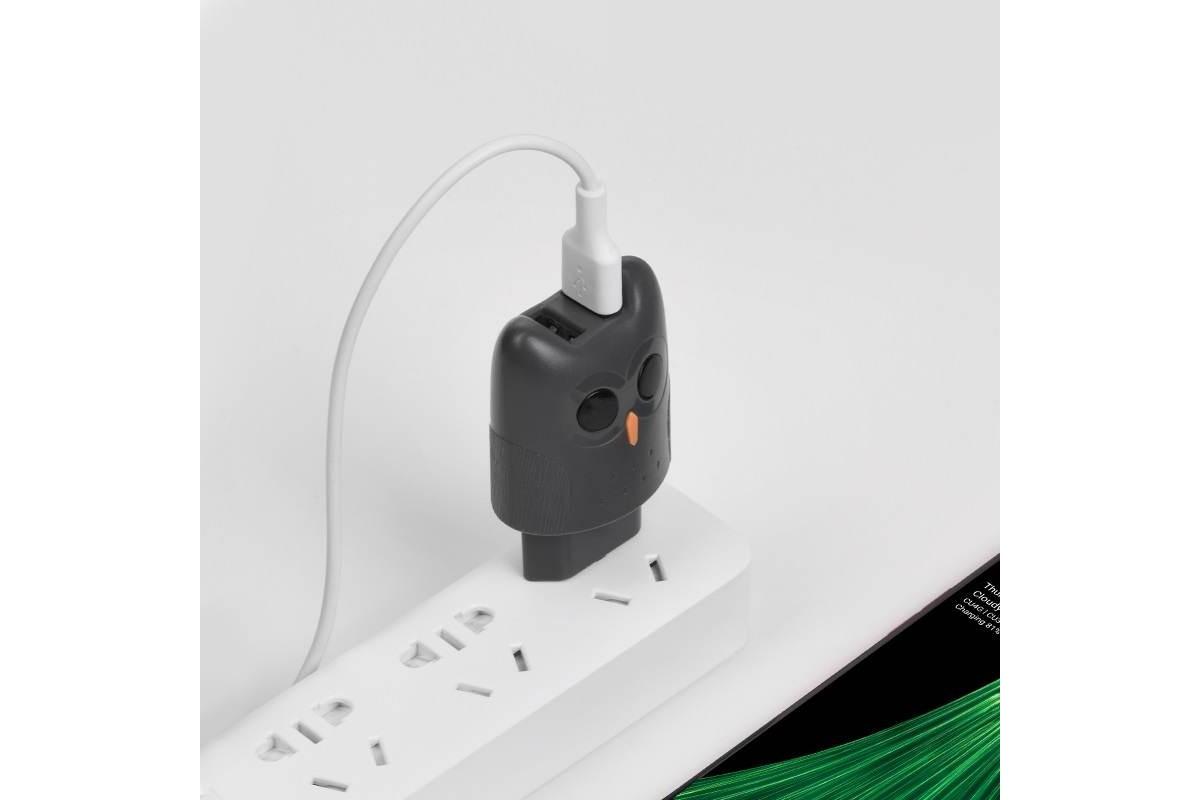 """Сетевое зарядное устройство 2 USB 2400mAh  HOCO KC1A Dual port charger """"Совенок"""" серый"""